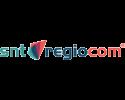 logo-snt2